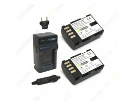 Wasabi Power Battery (2-Pack) and Charger Kit for Panasonic DMW-BLF19
